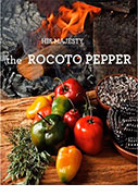 His majesty the rocoto pepper
